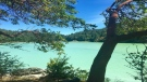 """The district of Sooke says the blue-green water is all natural and not necessarily """"an indicator of water quality concerns."""" (Kristina Wiggins)"""