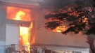 A one-eyed Chihuahua is dead and a home is gutted after a fire in Surrey Sunday night. (CTV News). July 25, 2016.