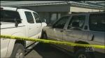 Man struck, killed on Courtenay sidewalk