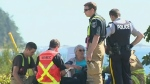 Another pedestrian hit by car in the Comox Valley