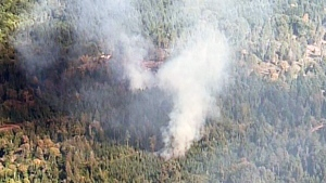 The wildfire grew to 1.4 hectares and caused northbound lanes of the Malahat to be shut down after embers sparked a second fire on the other side of the busy road. (CTV)