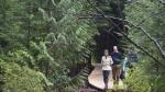 The Duke and Duchess of Cambridge walk through the Great Bear rainforest in Bella Bella, B.C., Monday, Sept 26, 2016. THE CANADIAN PRESS/Jonathan Hayward
