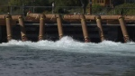 The high volume pumps will move six Olympic size pools of water into the river each hour to maintain the flow. Sept. 29, 2016 (CTV Vancouver Island)
