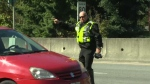 Const. Andy Dunstan instructs a vehicle entering the BC Ferries terminal at Swartz Bay to pull over. Sept. 30, 2016. (CTV Vancouver Island)