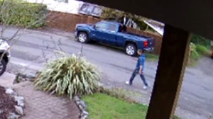 A neighbour's surveillance camera catches a man in a blue sweater on Adelaide Street just moments before an intruder forced his way into a Saanich home, then attacked a mother with a potted plant. Oct. 24, 2016.