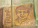 In this photo taken on Tuesday, Oct. 25, 2016, an aerial view of a giant portrait of U.S. Republican Presidential nominee Donald Trump. Italian land artist Dario Gambarin has used his tractor to transform a field near the Italian city of Verona into a giant portrait of Donald Trump.  (Dario Gambarin via AP)