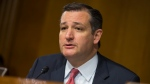 In this June 7, 2016 file photo, Sen. Ted Cruz, R-Texas speaks on Capitol Hill in Washington. (AP Photo / Evan Vucci, File)