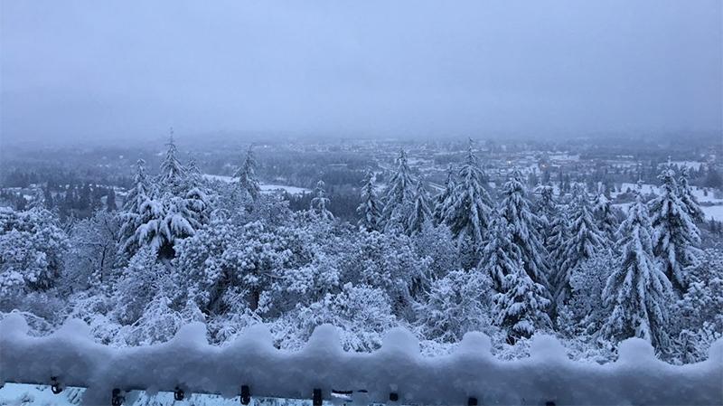 Weather Ladysmith Vancouver Island