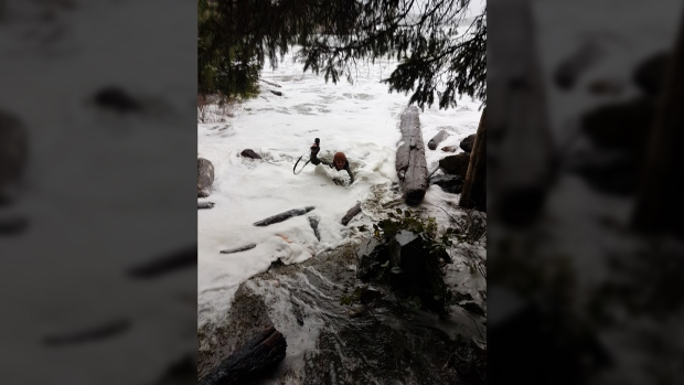 Extreme wave hazard warning issued for Pacific Rim Park