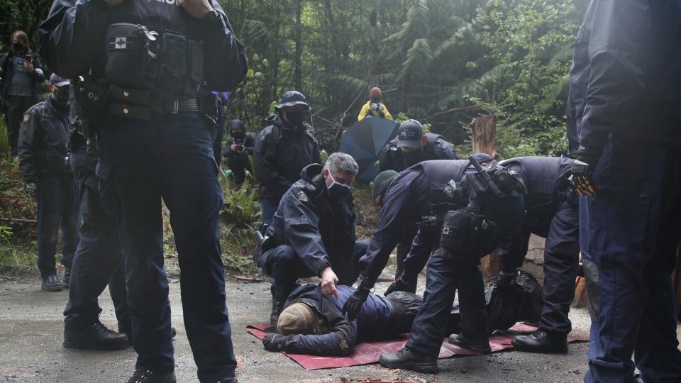 Caycuse RCMP arrests